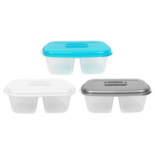RSW 2 SECTION FOOD CONTAINER 27X17X9CM